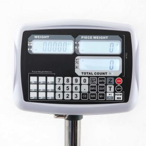 Digital Platform Counting Scales