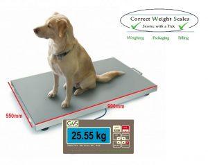 Vet Scales